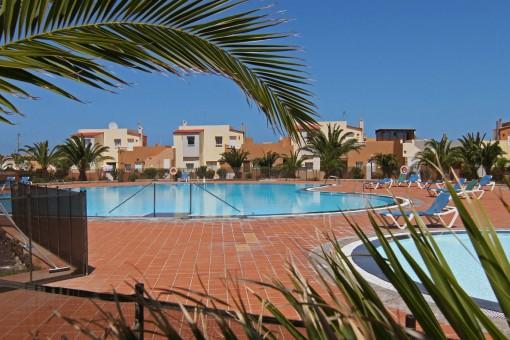 Apartment mit großer Dachterrasse in Corralejo, Fuerteventura